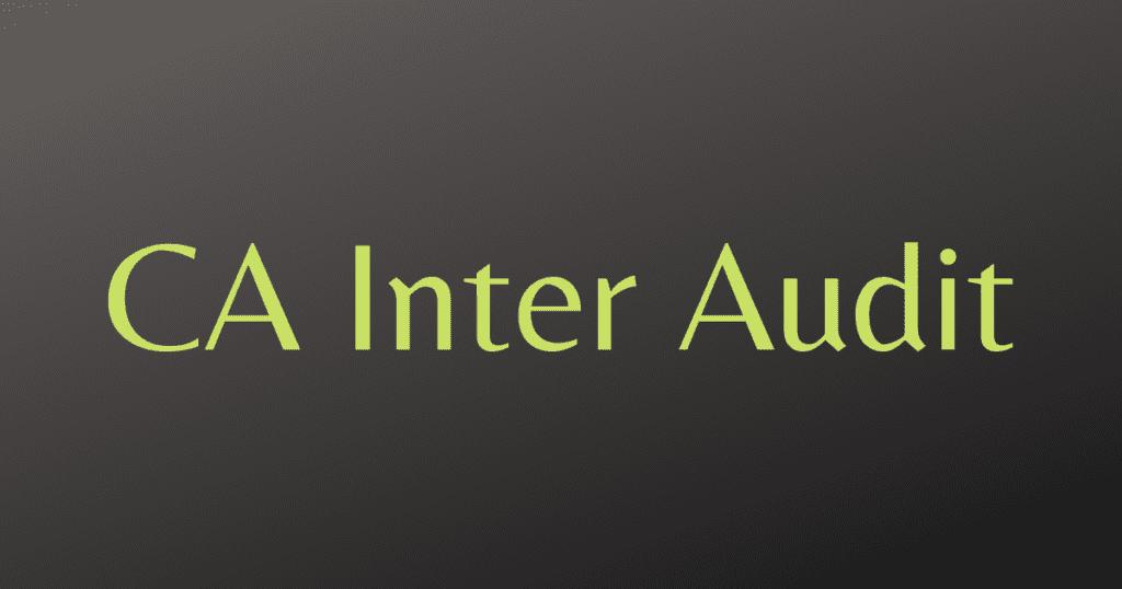 CA Inter Audit