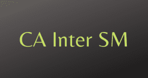 Read more about the article CA Inter SM Revision Videos